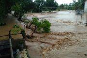 Tanggul Jebol Mengakibatkan Limpas Pada Sungai Beringin